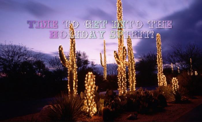 Holiday in Scottsdale - Christmas light aound cactus